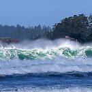 Sun and Sea dance Frank Island Tofino BC by TerrillWelch