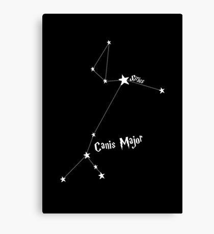 Constellation   Sirius (Canis Major) Canvas Print