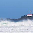 Lennard Lighthouse Tofino BC  by TerrillWelch