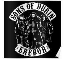 Sons Of Erebor Poster
