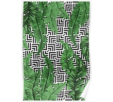 Tropical leaf pattern Poster