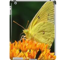 Cloudless Sulphur On Butterfly Weed iPad Case/Skin
