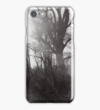 Sun Shining Through Trees iPhone Case/Skin