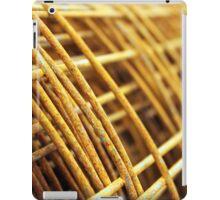 Spring Roll iPad Case/Skin