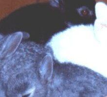 Bunny Basket Sticker