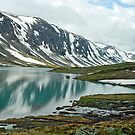Gamle Strynefjellsvegen - Norway by Arie Koene