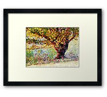 Casually Colorful Framed Print