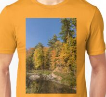 Autumn on the Riverbank - the Changing Forest Unisex T-Shirt