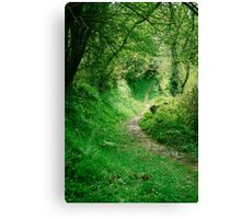 Footpath Canvas Print
