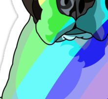 Rainbow Pibble Sticker