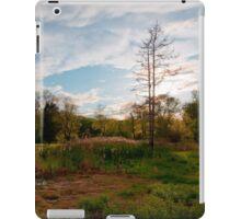 Backyard Kingdom iPad Case/Skin