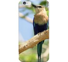 Perched iPhone Case/Skin