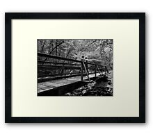 The Hikers Framed Print