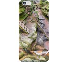 Trail Ladders in Bear Hollow iPhone Case/Skin