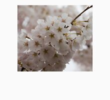 A Branch of Pale Pink Sakura Cherry Blossoms - Longing for Spring Unisex T-Shirt