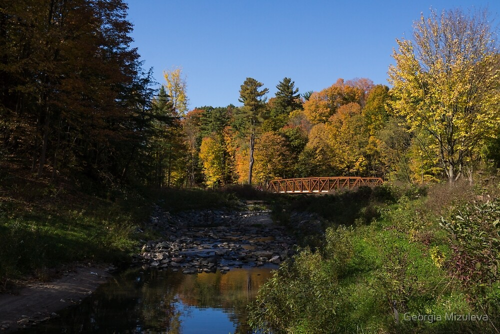 Rusty Little Bridge Complementing the Fall Colors by Georgia Mizuleva
