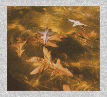 Gold Fall - Oak Leaves Floating in a Fountain Kids Tee