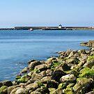 A Calm May Morning - Lyme Regis by Susie Peek