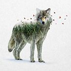Wild I Shall Stay | Wolf by soaringanchor