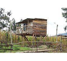 House on Stilts Photographic Print