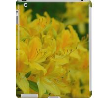 Orange Splash in the Garden iPad Case/Skin