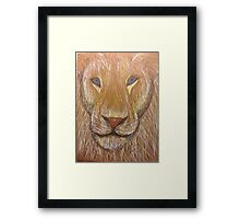 Lion in Colored Pencil Framed Print