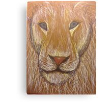 Lion in Colored Pencil Canvas Print
