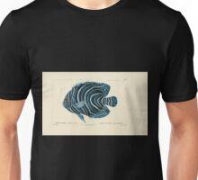 Natural History Fish Histoire naturelle des poissons Georges V1 V2 Cuvier 1849 063 Unisex T-Shirt