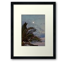 Moon Over Palm Tree Framed Print