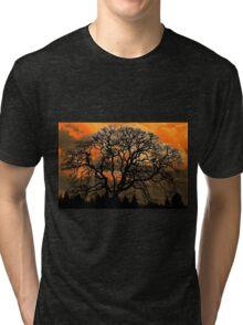 Altered Oak 3 Tri-blend T-Shirt