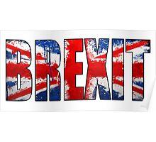brexit paint splatter Poster