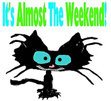 This Cat Is Ready For The Weekend Photographic Print