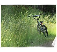 Bicycle Waiting For Summer Rider Poster