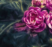 PinkSpot by Steve Walser