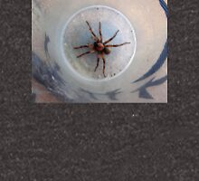 Large Agressive Spiders on front porch. Adelaide hills. Unisex T-Shirt