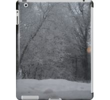 Outdoor Winter Wonderland iPad Case/Skin