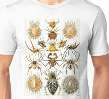 Ernst Haeckel Arachnid Drawings - Creepy Crawlies Unisex T-Shirt