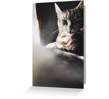 Christie Cat Greeting Card