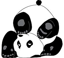 Playful Panda Photographic Print