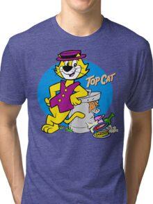 Stylish Cat Tri-blend T-Shirt