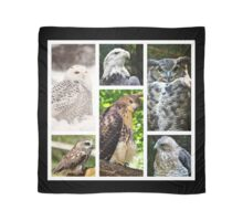 birds of prey collection Scarf