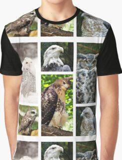 birds of prey collection Graphic T-Shirt