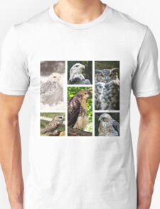 birds of prey collection Unisex T-Shirt