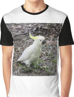 Cocky 3 Graphic T-Shirt