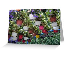 Many suspended flower pots in the park. Greeting Card
