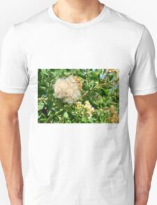 Beautiful fluffy flower and green leaves in the park. T-Shirt