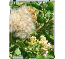 Beautiful fluffy flower and green leaves in the park. iPad Case/Skin