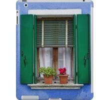 Window iPad Case/Skin