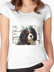 Portrait Of A King Charles Cavalier Spaniel Women's Fitted Scoop T-Shirt