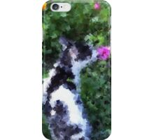 White and black cat iPhone Case/Skin